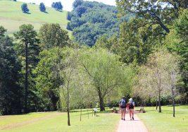 Monticello Home