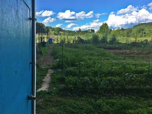 Community Gardent in Dunlora Charlottesville.