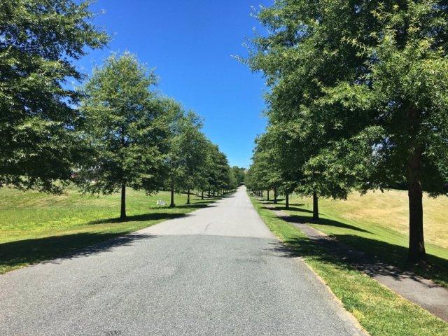 Foxchase Crozet neighborhood road