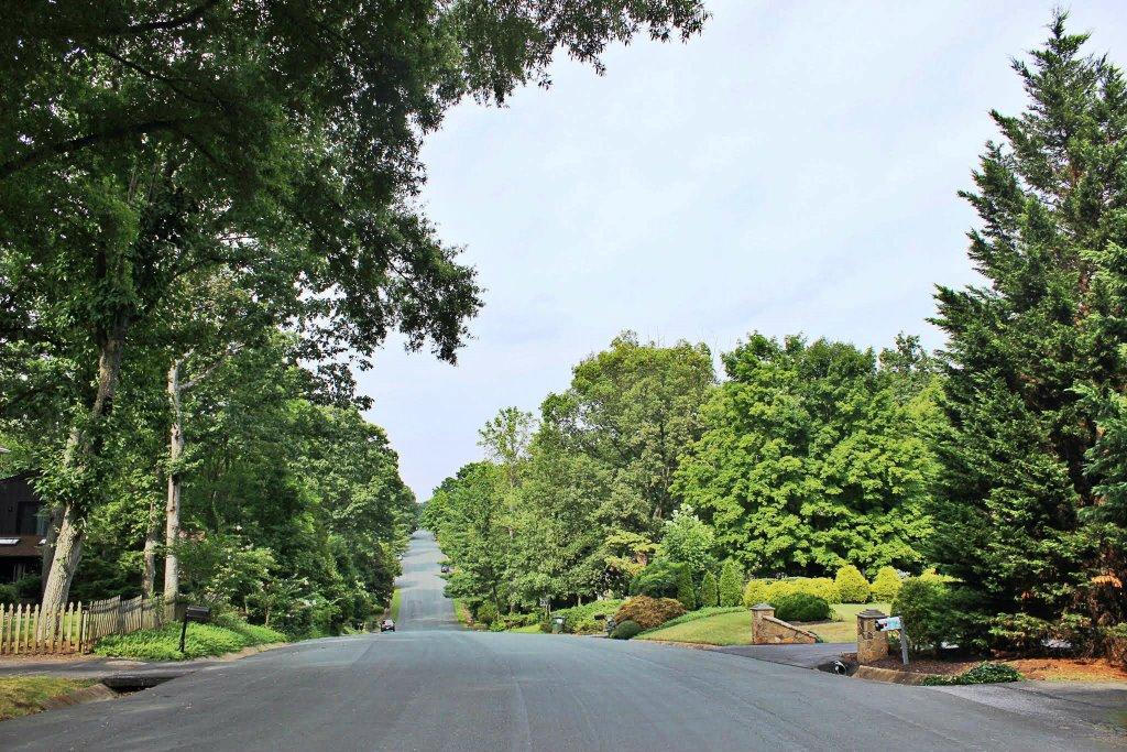 Road at Canterbury Hills