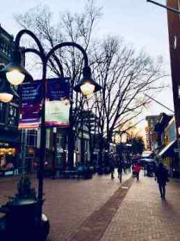 The Downtown Mall