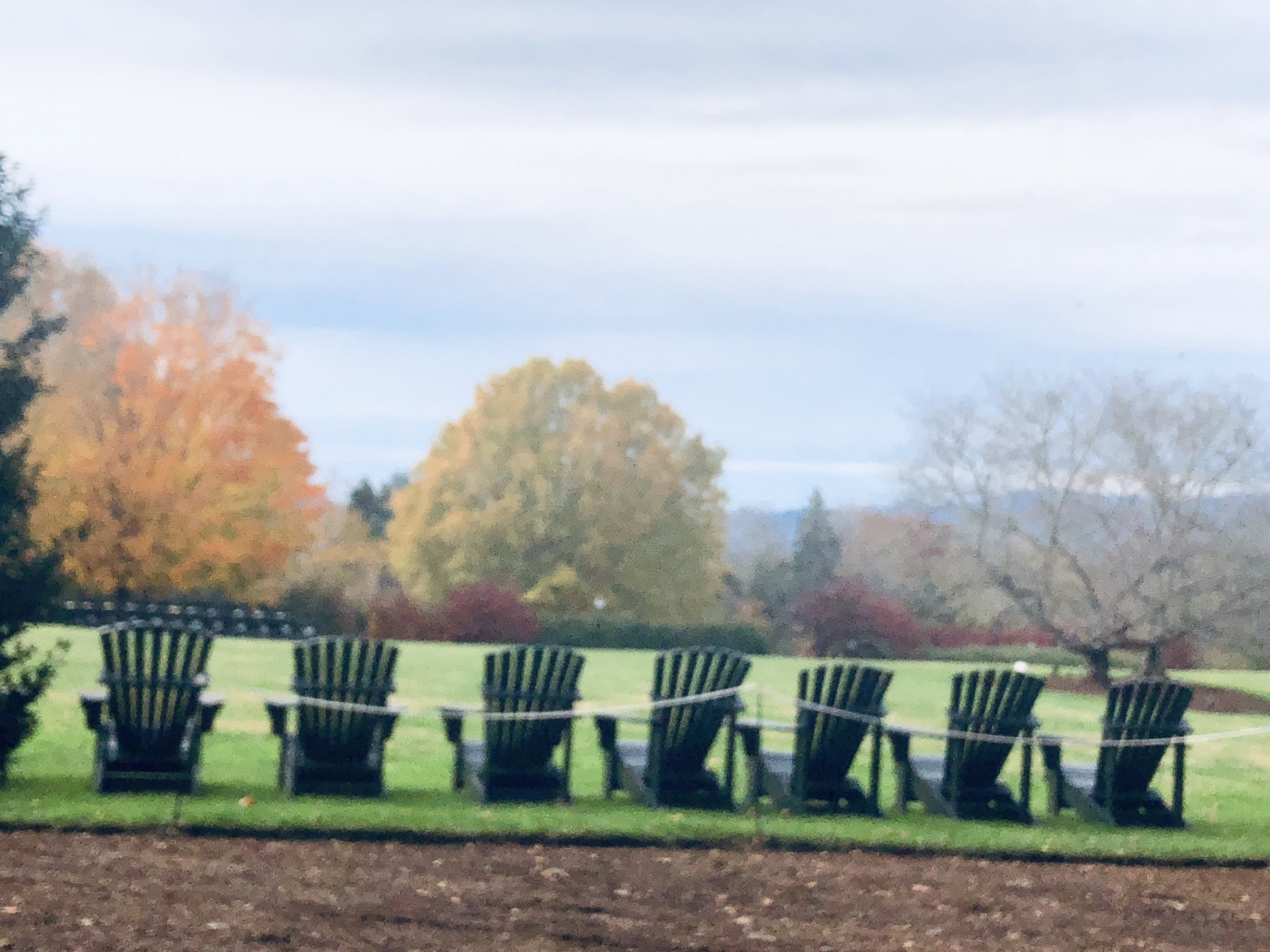 Chairs Lined Up in Farmington